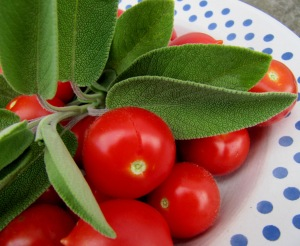 Tomaten und Salbei auf einem Teller