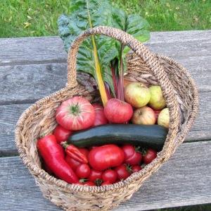 Korb mit frischem Obst und Gemüse: Tomaten, Paprika, Mangold, Äpfel.