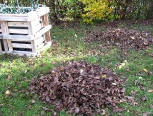 Zusammengekehrtes Herbstlaub auf einer Wiese